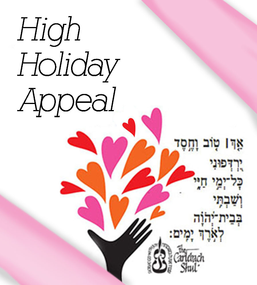 chesed_appeal